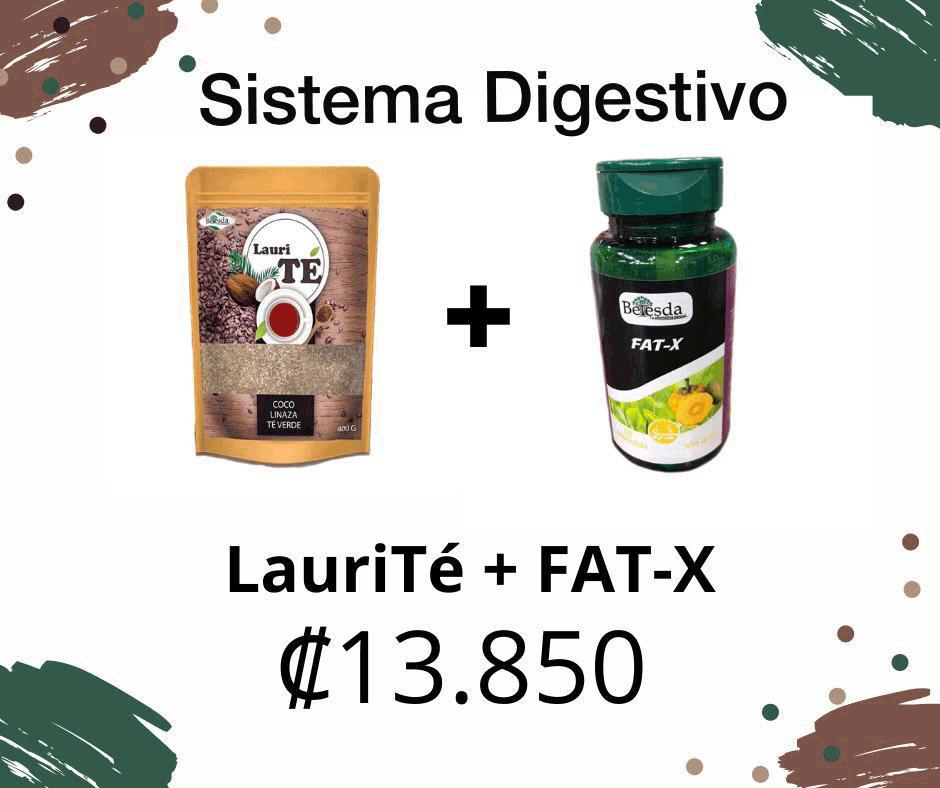 sistema-digestivo-1